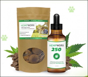 CBD Dosage for Pets