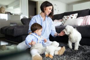 High Quality CBD Dog Treats